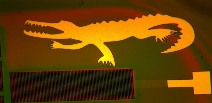 Nanofabrication Cavendish Crocodile